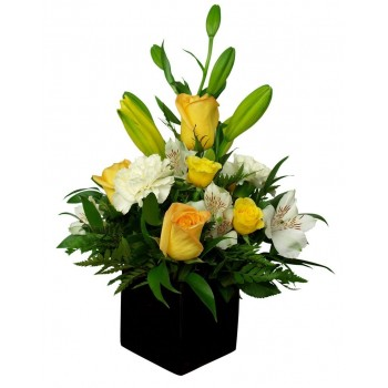 Centro de Flores Bristol