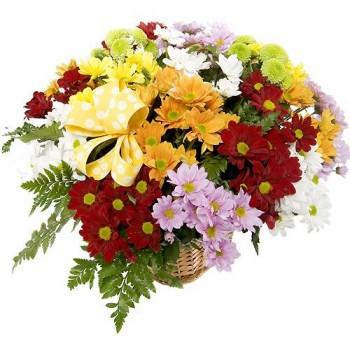Cesta de flores Huesca